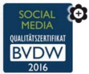 BVDW Social Media 2016