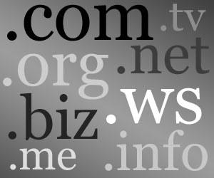 Einige Domain-Endungen