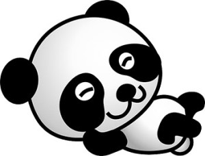 panda-update-40