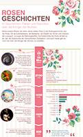 infografik-rosen