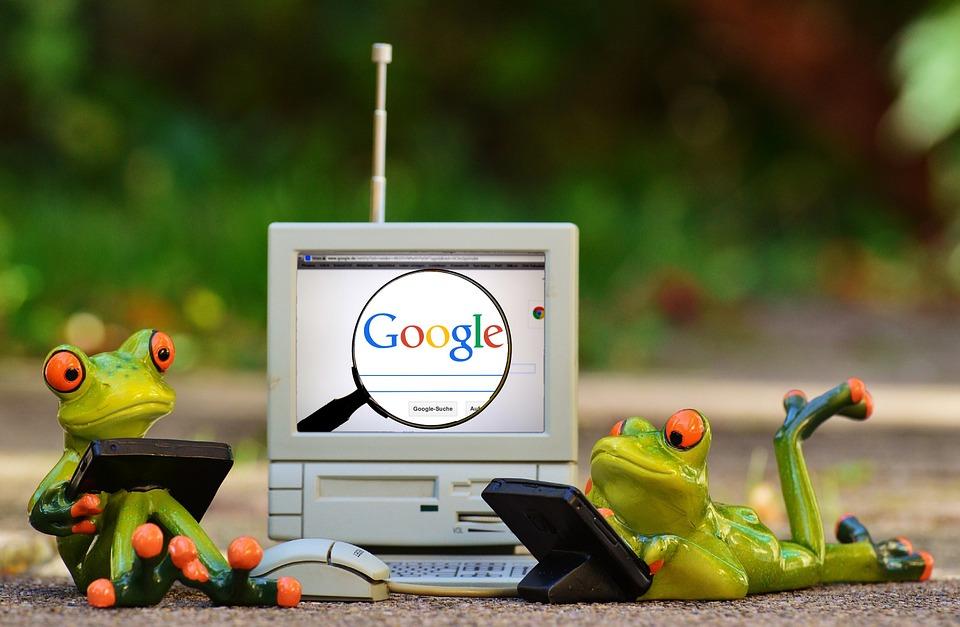 Google und Frösche